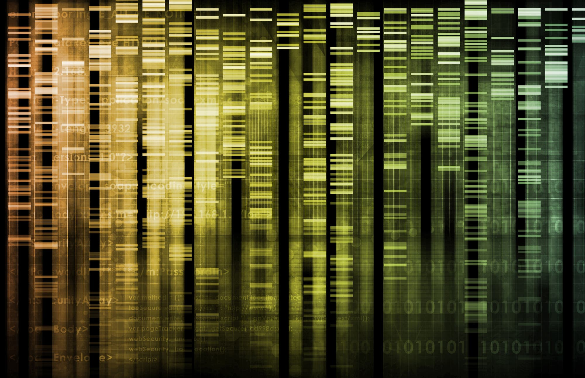 DNA-Fragment