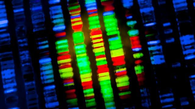 DNA Sequenzierung