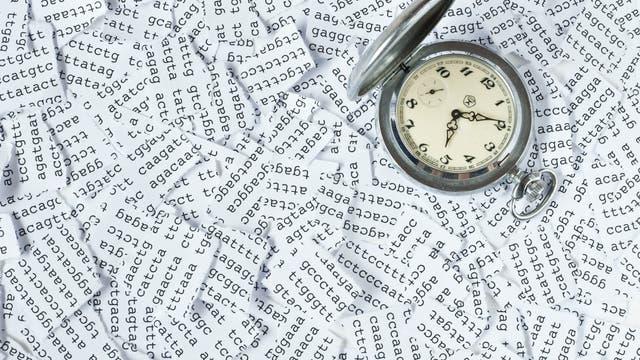 Die Zeit steckt uns in den Genen