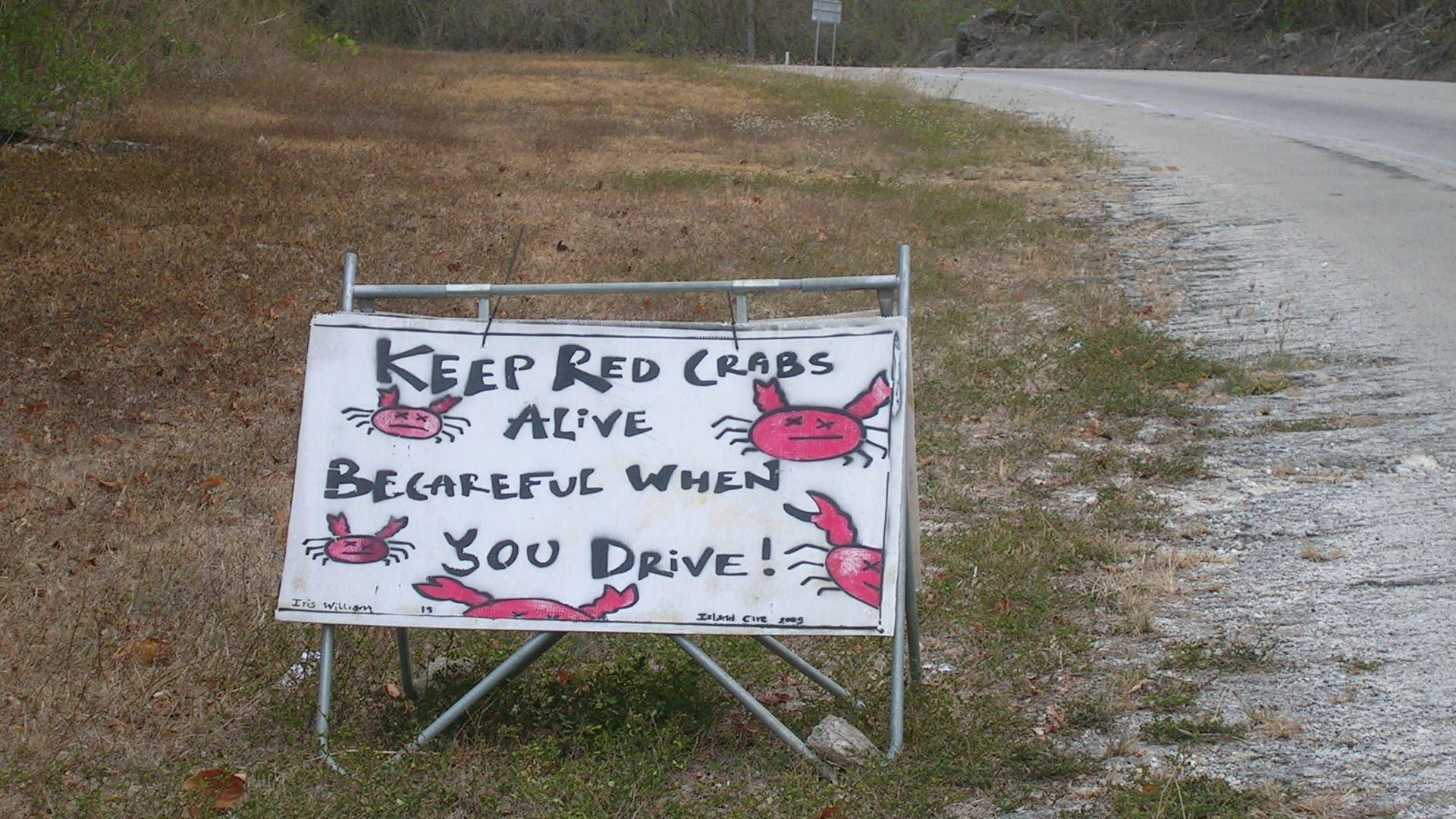 Warnung vor dem Krabben