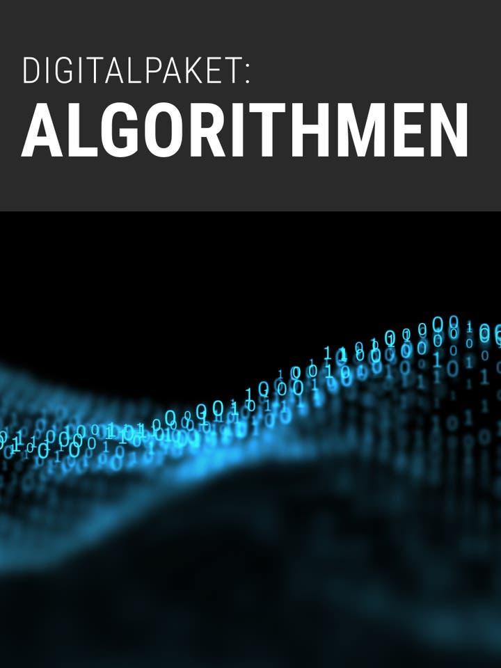Digitalpaket Algorithmen Teaserbild
