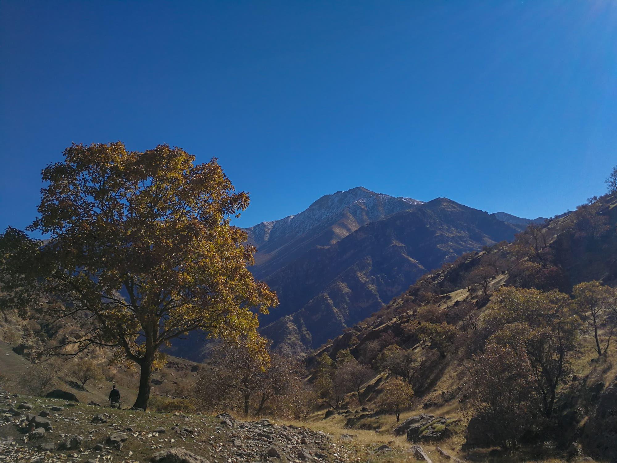 Kurdische Berge