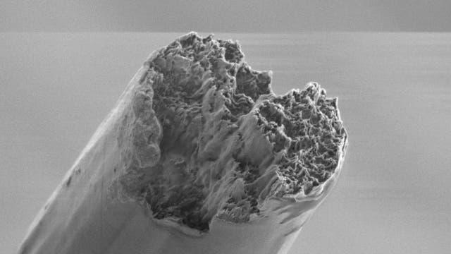 Abgebrochenes Ende der hydrodynamisch gesponnenen Faser. Der Durchmesser der Faser ist etwa 10 Mikrometer.