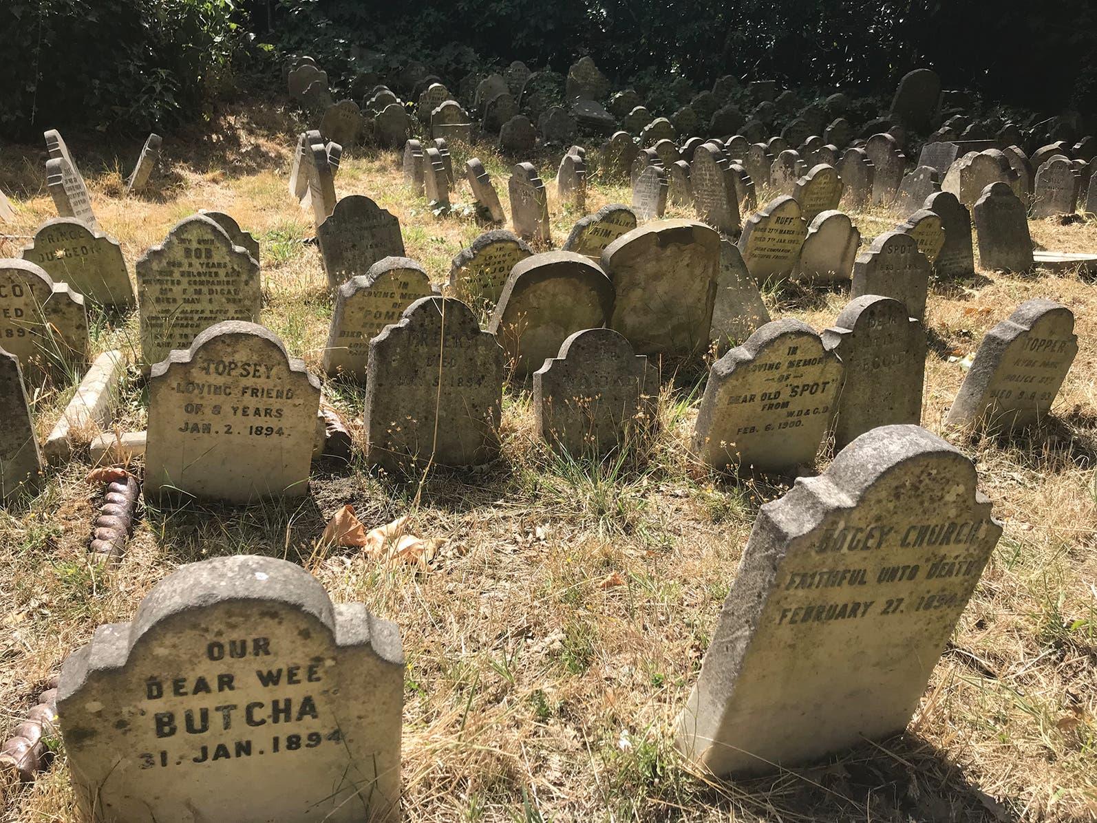 Früher Tierfriedhof