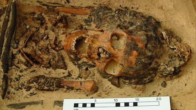 Der erste originale Salbkegel - die Reste liegen neben dem Schädel der Toten aus einem Friedhof in Amarna.