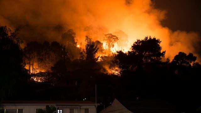 Hell loderndes Buschfeuer in Australien bei Nacht