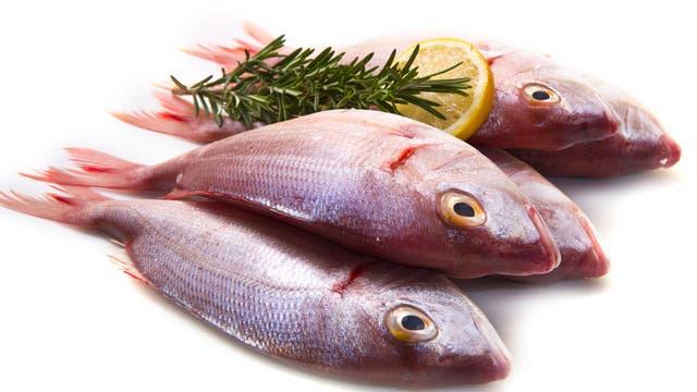 Quecksilber in Fisch