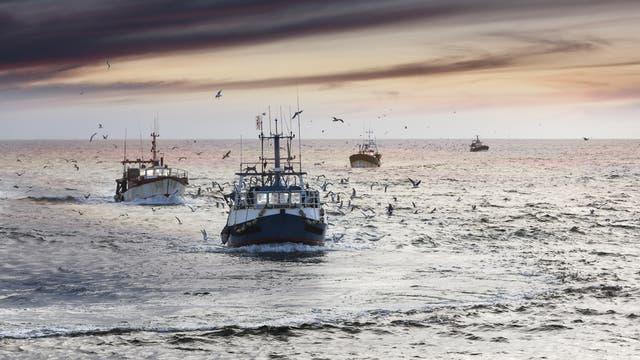 Fischfang (Symbolbild)