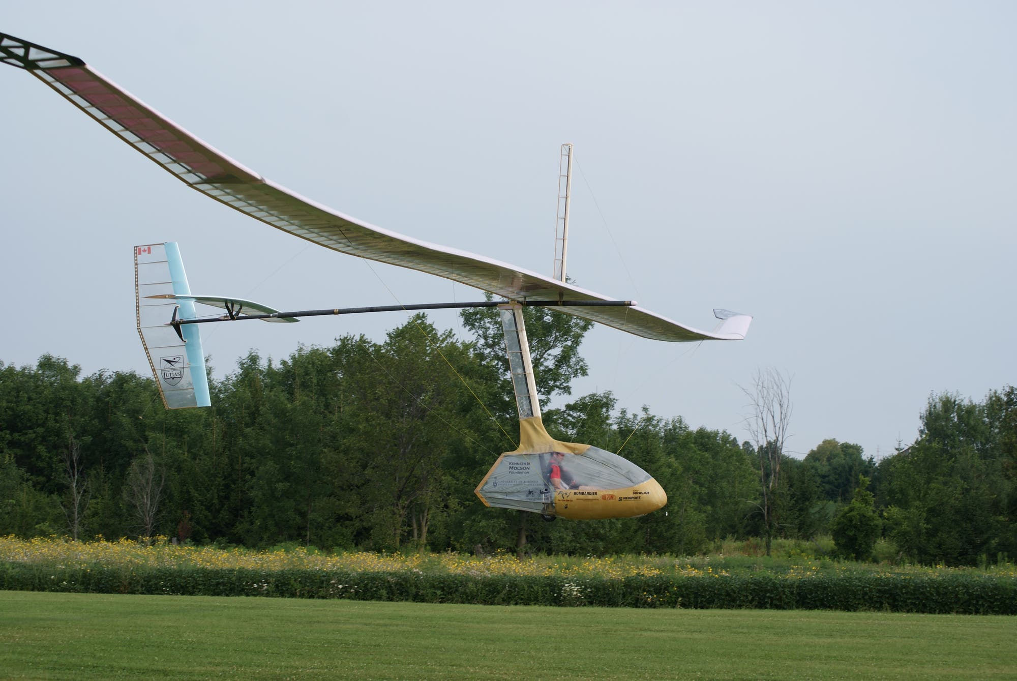 Ornithopter - in Leichtbauweise