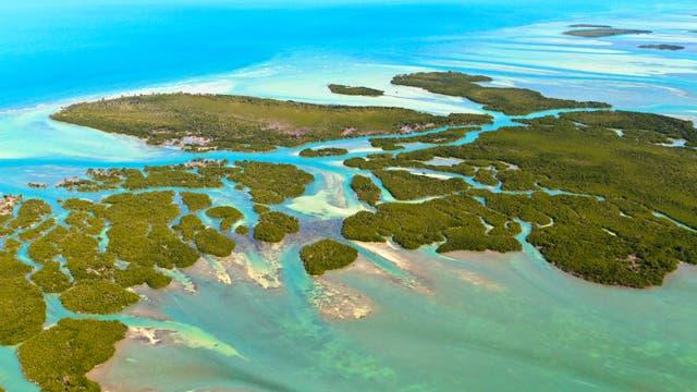 Rund um die Florida Keys finden sich noch Korallenriffe - aber nur wenige.