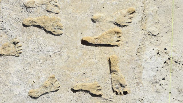 Fußabdrücke früher Amerikaner