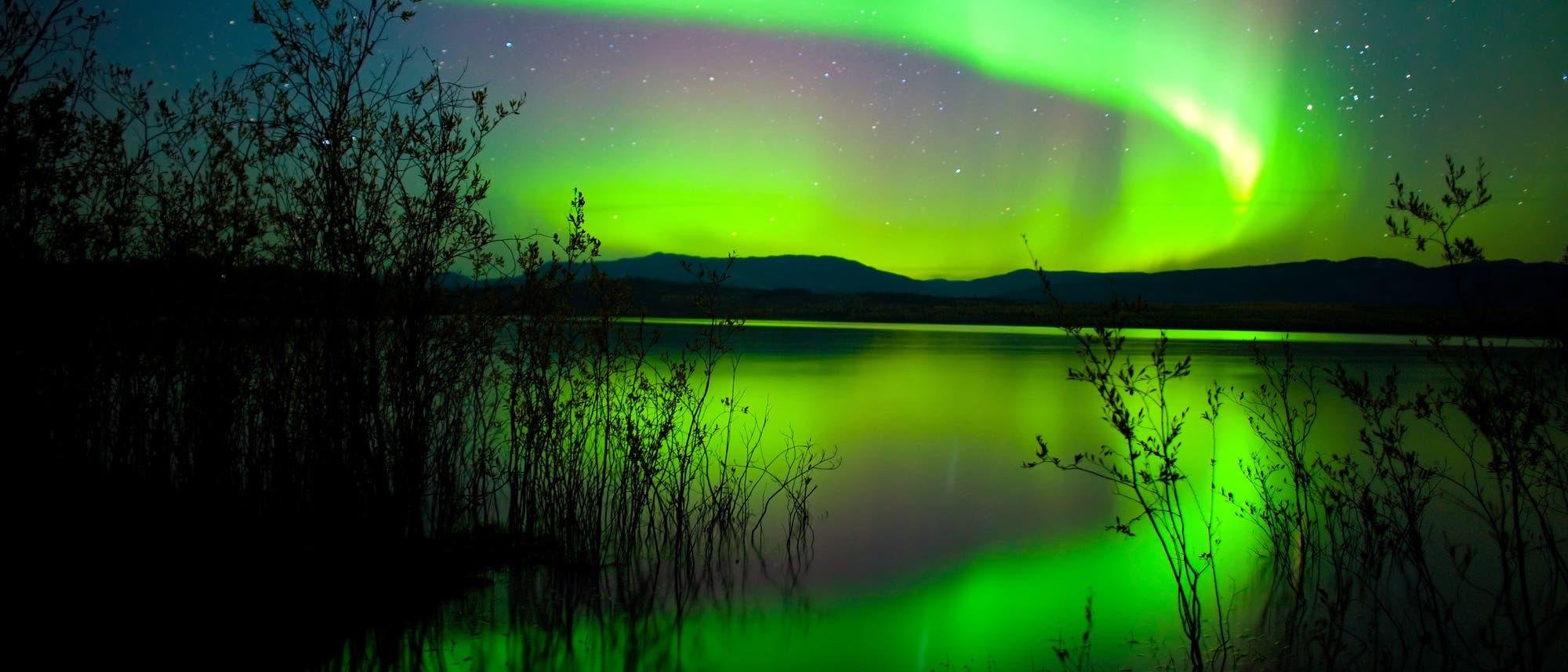 Polarlicht über dem Yukon in Kanada