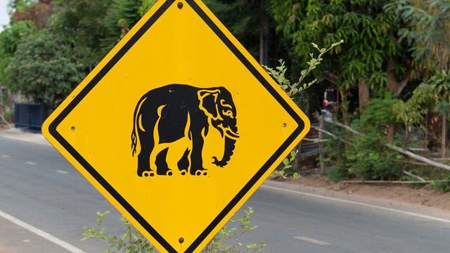 Achtung: Elefanten!