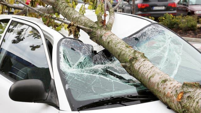 Ein Ast hat Windschutzscheibe und Dach eines geparkten Autos eingedrückt