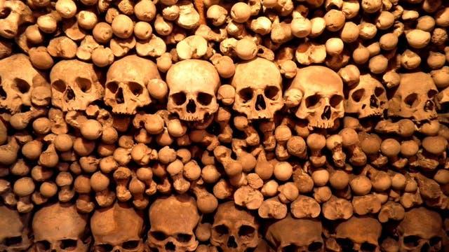 Eine Reihe Schädel in einem Stapel ordentlich sortierter menschlicher Knochen