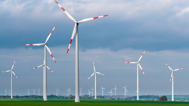 Ein Windpark mit Windrädern
