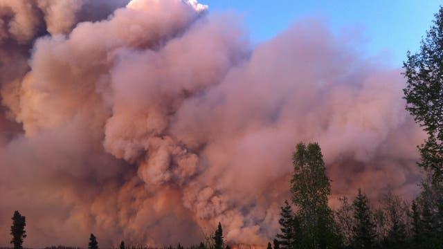Waldbrand in Nordamerika (Symbolbild)