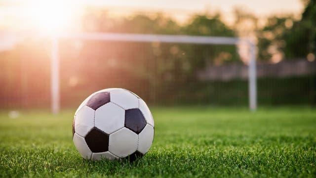 Ein Fußball auf einem Fußballplatz vor dem Tor.