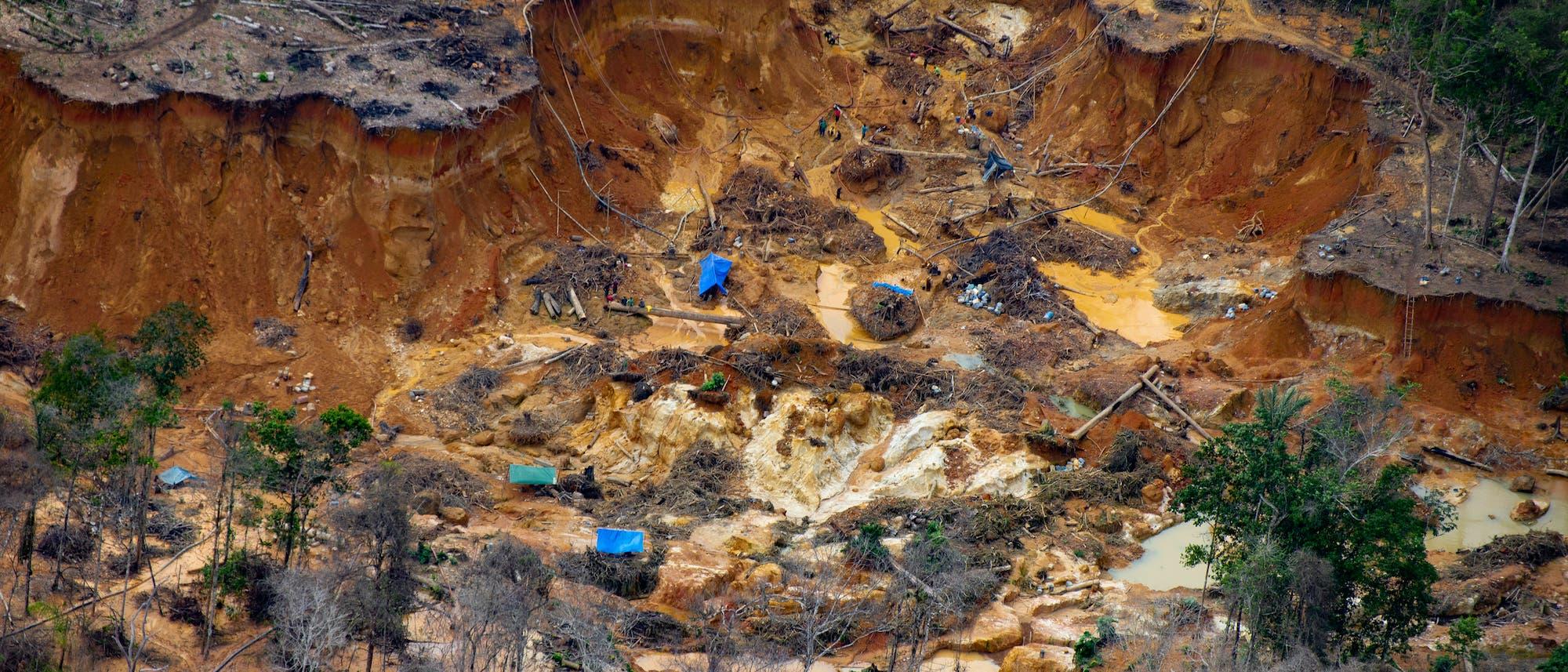 Bei einem Überflug über Yanomami-Land entdeckte Greenpeace zahlreiche illegale Goldminen