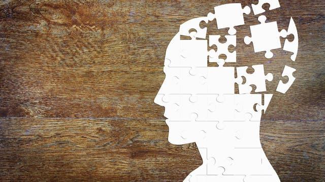 Gehirn Puzzle