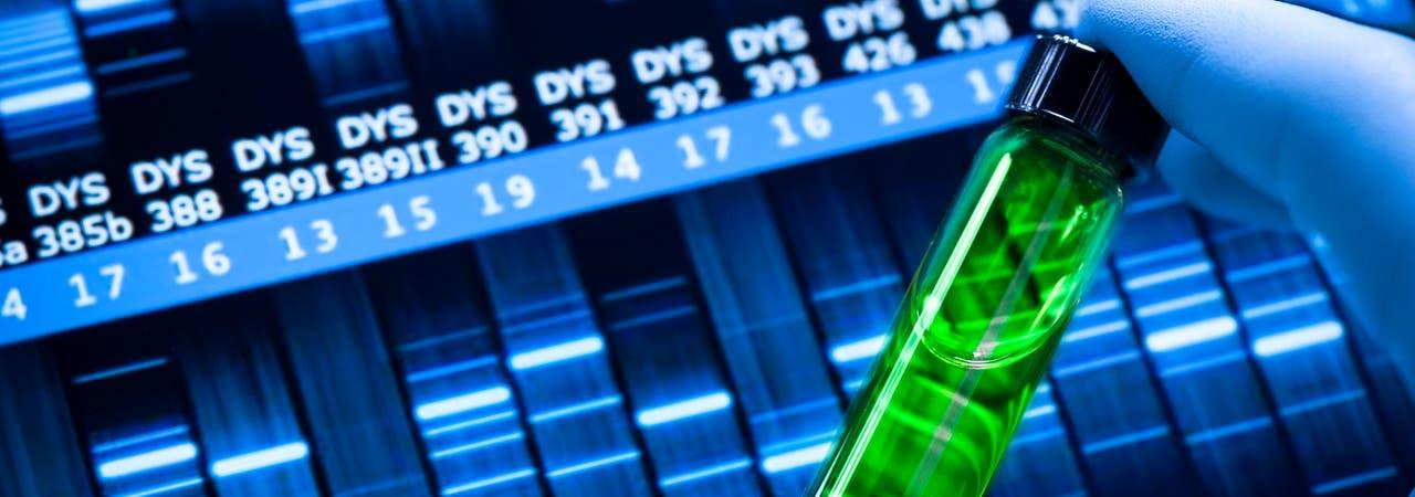 Antisense-Wirkstoffe greifen in den genetischen Ablesevorgang ein