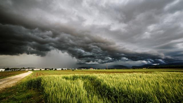 Gewitter über Feld