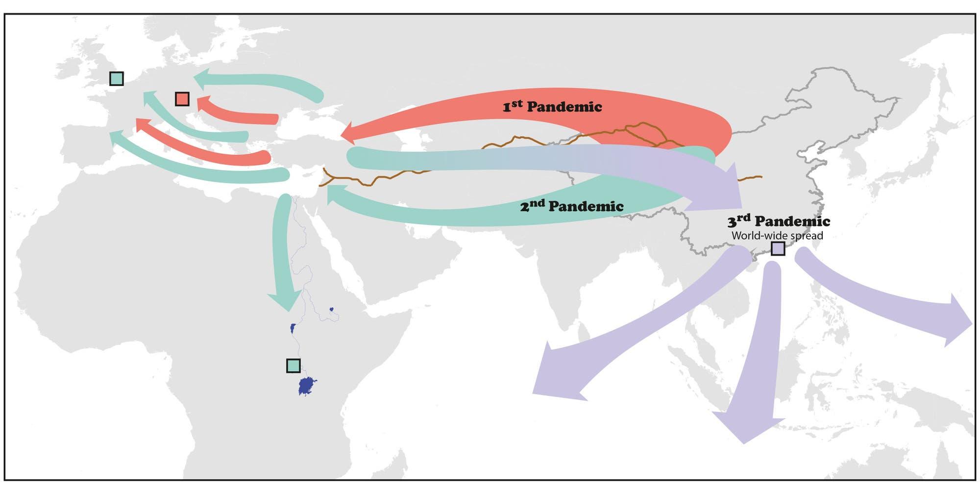 Die drei Pestpandemien