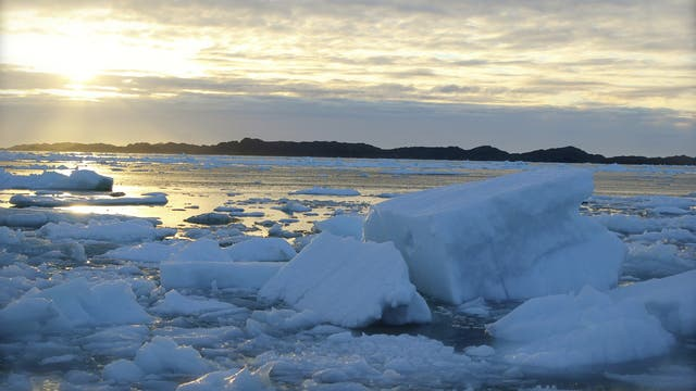Eis vor Grönland