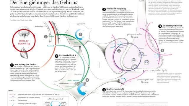 Infografik Energiehunger
