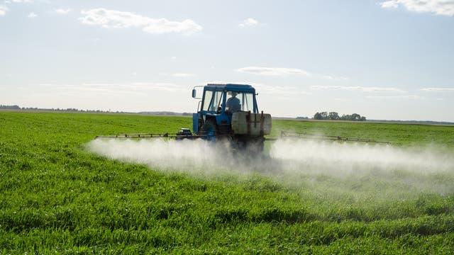 Traktor sprüht Herbizide auf grünem Feld