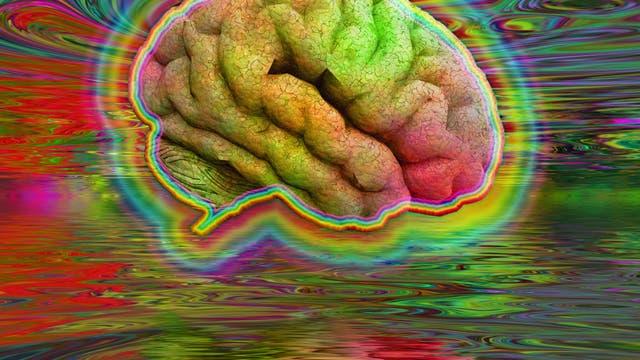 Psychedelisches Gehirn