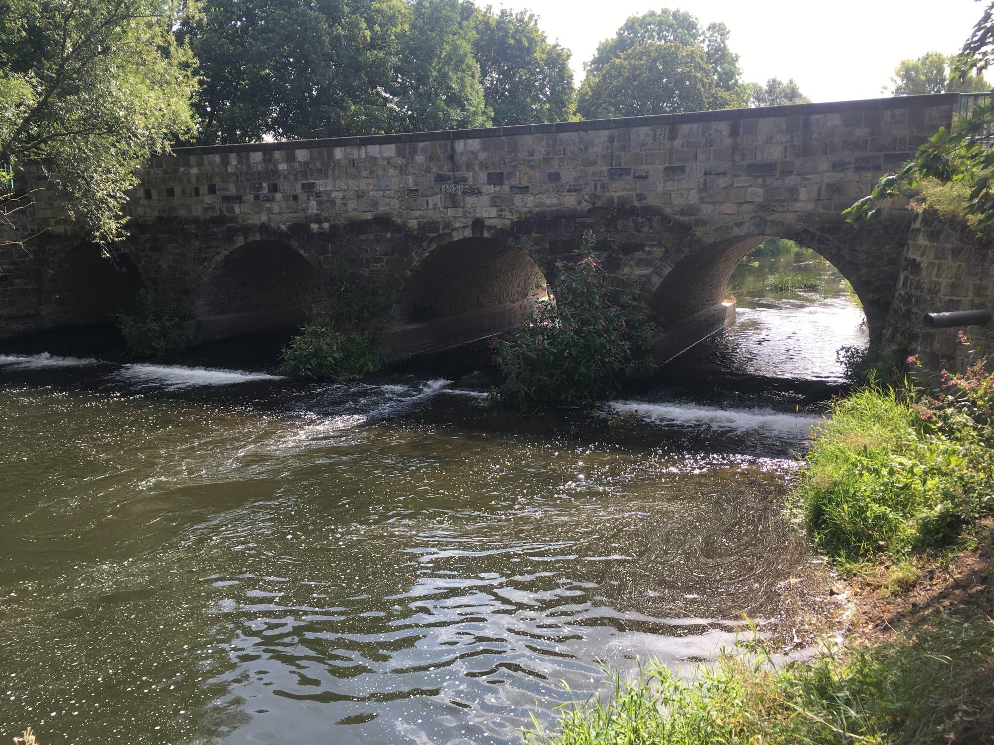 Die Bode bei Gröningen (Sachsen-Anhalt)