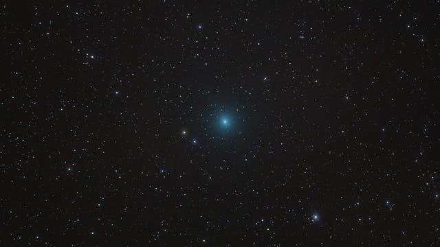 Der Komet Wirtanen Ende November 2018