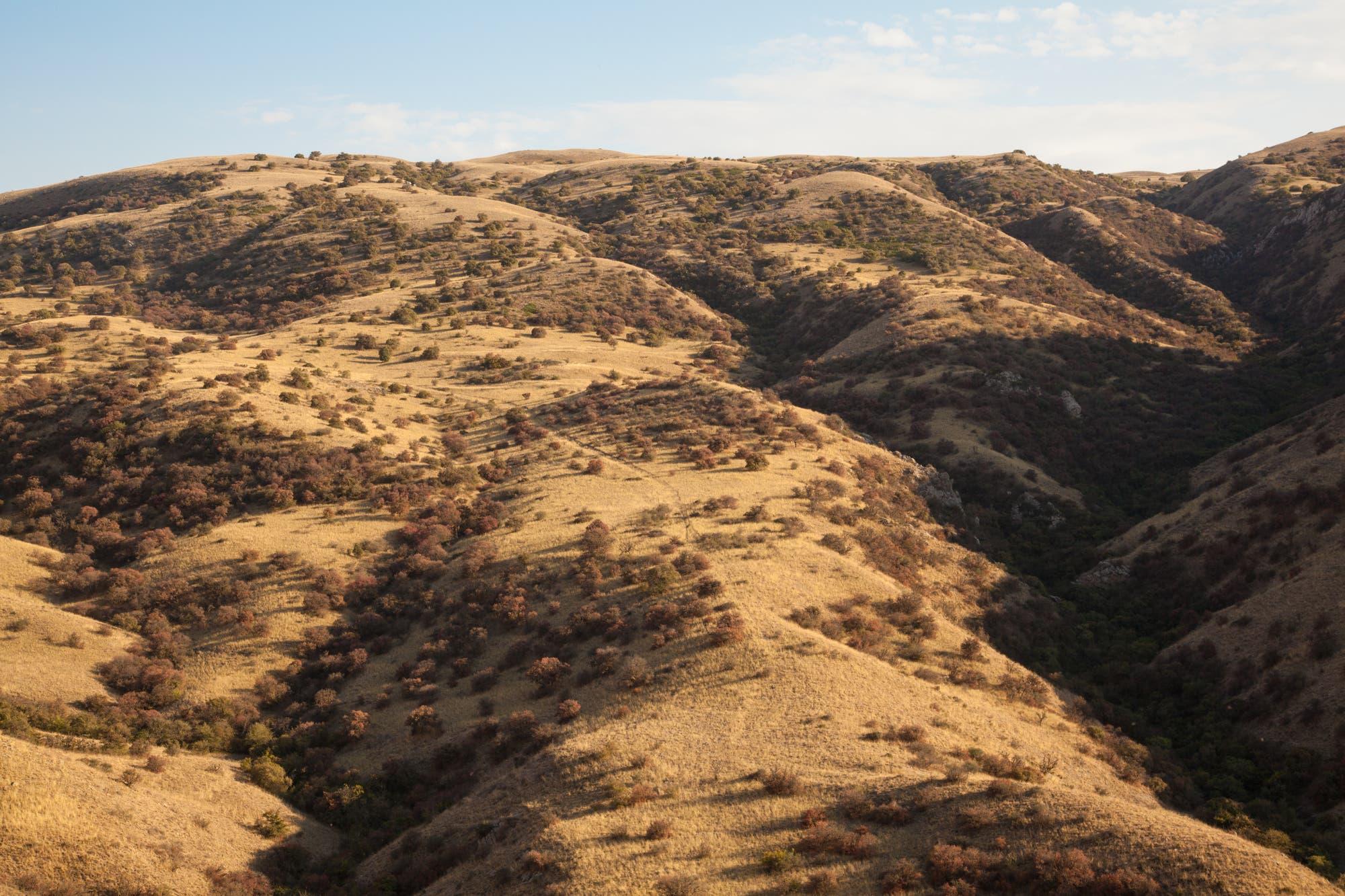 Gesprenkelte Landschaft im iranischen Golestan-Nationalpark