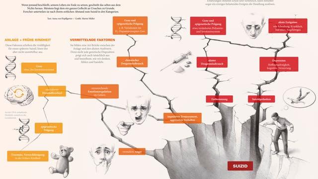 Infografik Suizid
