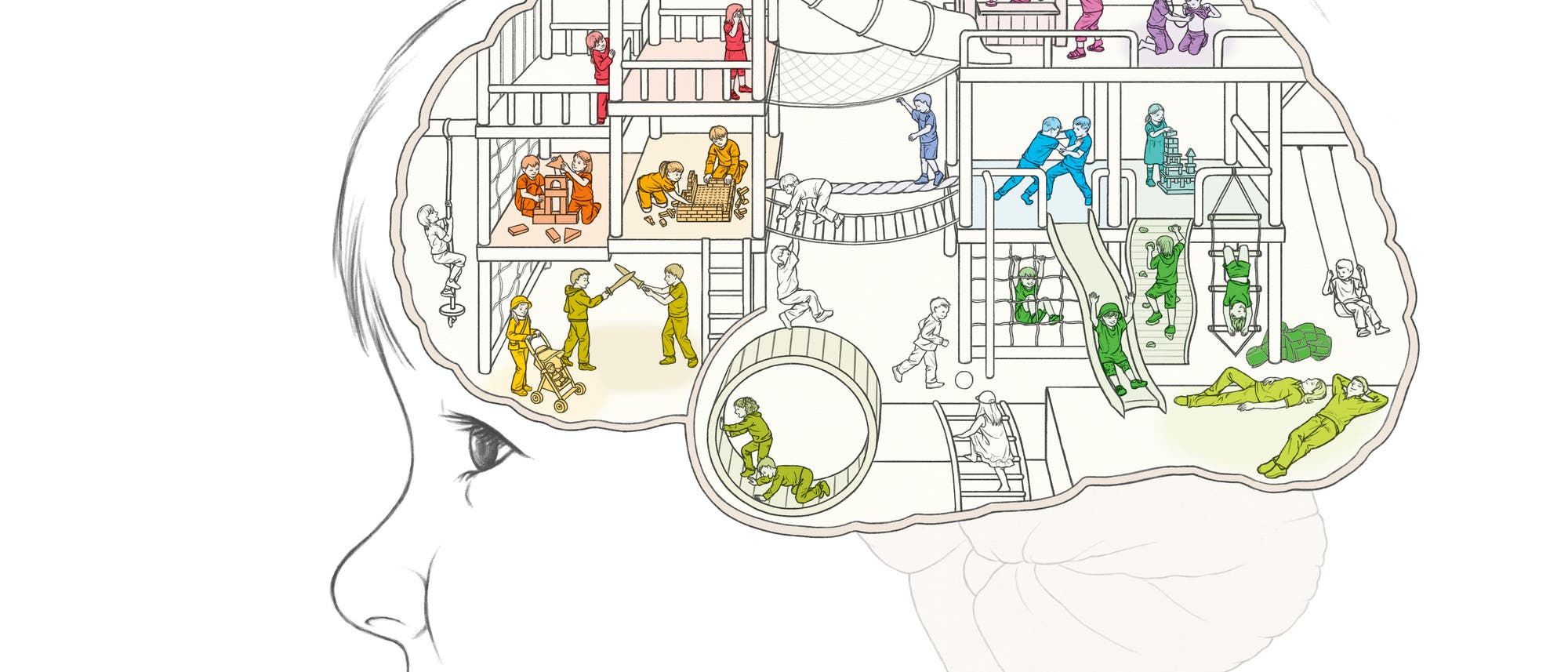 Im Inneren des Gehirns sind verschiedene Areale verschiedenen Aufgaben zugeordnet, die hier visualisiert sind.