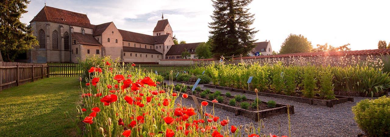 Klosterinsel Reichenau Kräutergarten
