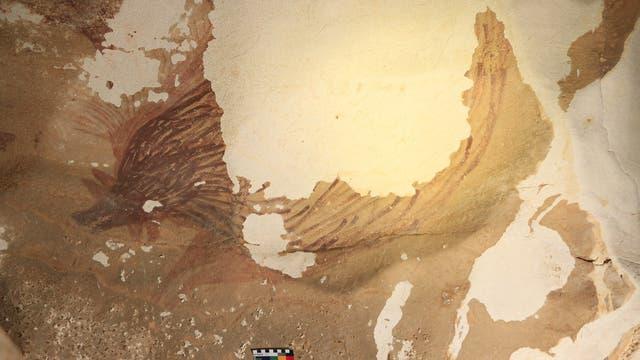Schwindende Höhlenmalerei