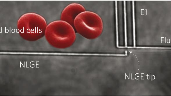 Nanoinjektor