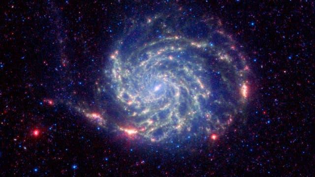 Die Spiralgalaxie Messier 101 im Sternbild Großer Bär