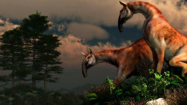 Die Macrauchenia gehörten zu den letzten Vertretern einer außergewöhnlichen Säugetierfamilie in Südamerika.