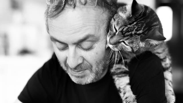 Katze hängt über der Schulter eines Mannes und schleckt ihm die Wange