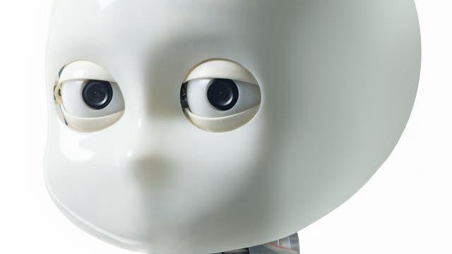 Roboter iCub