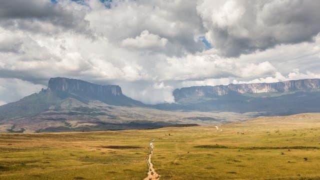 Roraima in der Großen Savanne