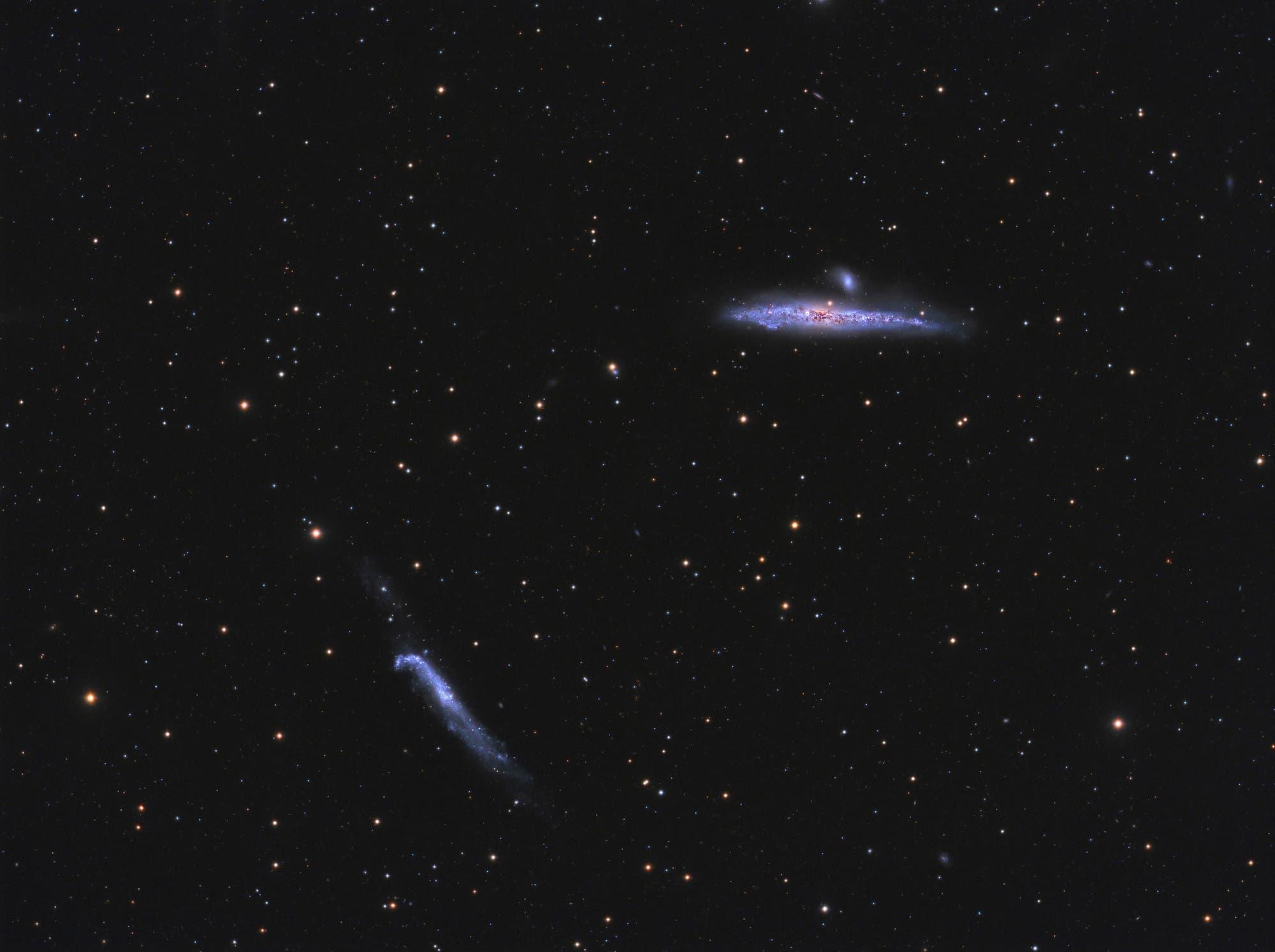 Der Walfisch und der Hockeyschläger (NGC 4631 und 4656)