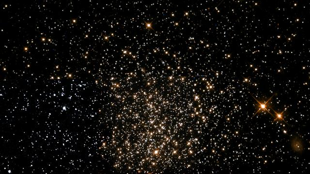 Sternhaufen NGC 1651