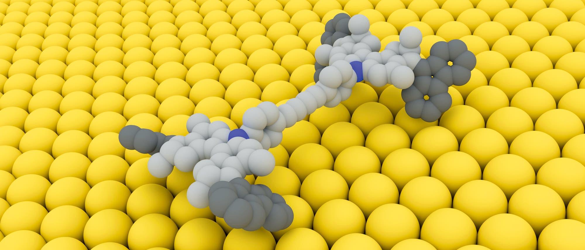 Im Schneckentempo durchs Nano-Land