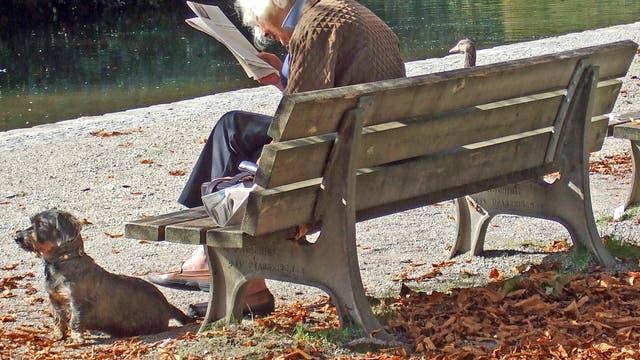 Schutz vor Alzheimer