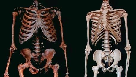 Neandertaler und moderner Mensch