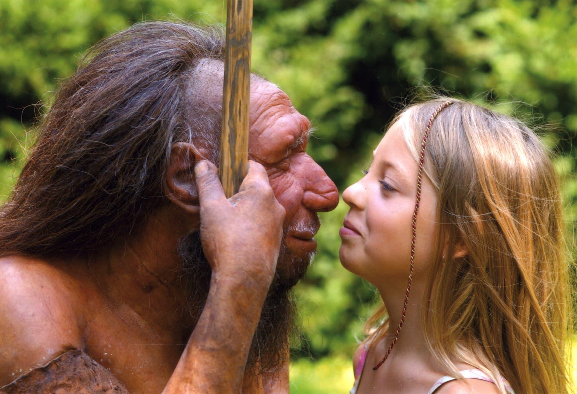 Neandertaler und der Mensch